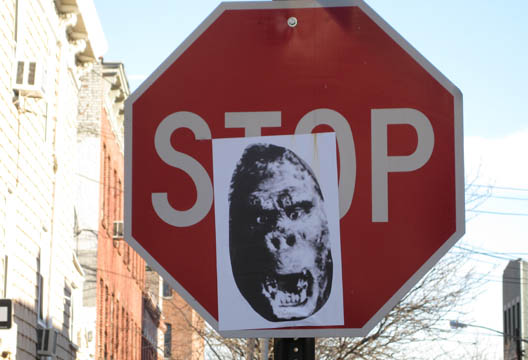 Stop Sign Gorilla