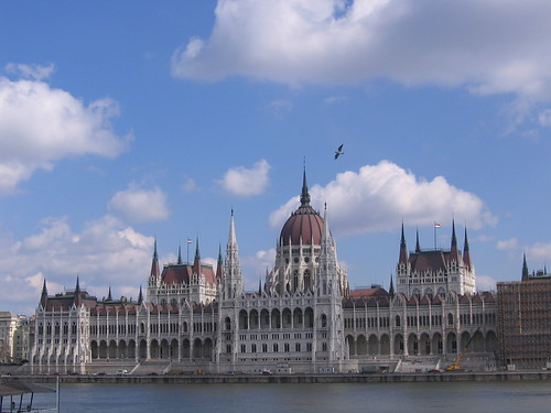 parliament&bird