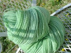 Handspun Falkland Sock Green Back
