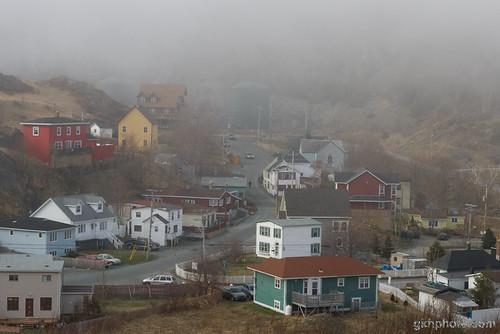 Quidi Vidi in Fog