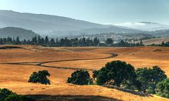 (Igor Krivokon) Tags: landscape nikon hdr d300 nikon18200vr photofaceoffwinner pfogold