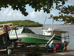 Nos Verdes Mares (barrianne) Tags: travel brazil beach bahia forro festasjuninas acaraj cabrlia
