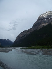 Field (joadc) Tags: river athabasca
