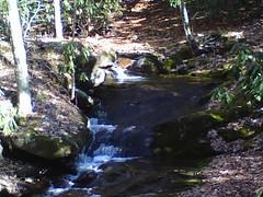 0127081527 (crimsonredclover) Tags: beautiful nc day burnsville