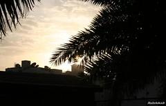 (Shahrashoob) Tags: sunset madina satellitedish   almadinah arabistan    shahrashoob   shiayanmosque