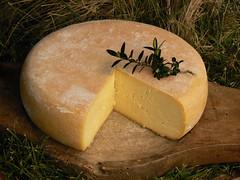 Dégustation des fromages des pyrénées