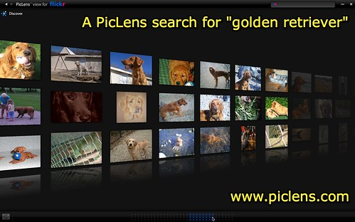 "PicLens search for ""golden retriever"""