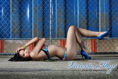 Victoria May (simpsonyiu.com) Tags: flowers blue hot girl tattoo fence pose hair studio ed photography lights design model shoes shiny long may down victoria tattoos jewlery swimsuit simpson hardy laying heals yiu simpsonyiucom