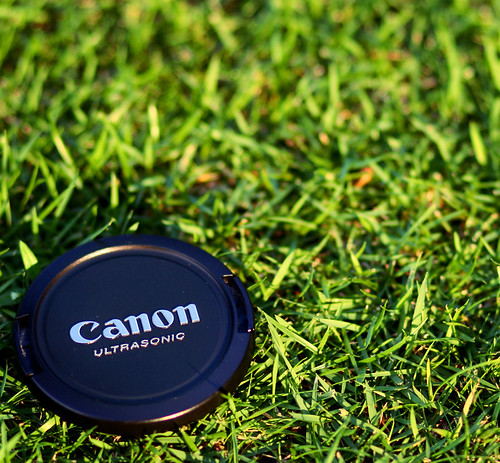 Canon on Green