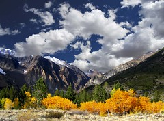Parker Canyon Fall Colors California's High Sierra (Bill Wight CA) Tags: california mountains clouds fallcolor workshop aspens sierranevada highsierras easternsierra easternsierranevada billwight wwwmountainhighworkshopscom