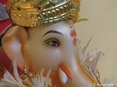 Ganpati Bappa (Learning to Click..) Tags: blessings eyes god divine ganesh ganpati siddhivinayak festivalsofindia ganpatibappa moryya