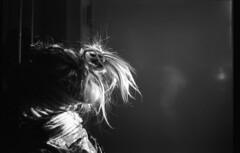 Dreads (Sophie Teunissen) Tags: door family en sunlight white black girl monochrome dreadlocks hair shine little sister familie dreads zwart wit zusje meisje deur cato zonlicht kleine haar monochroom schijnen monochromeaward
