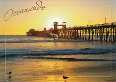 CALIFORNIA (Bubble-GumIII) Tags: postcard collection postcards bubblegum