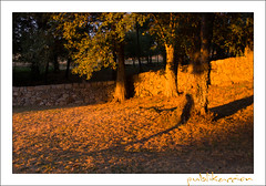 El Bosque, Béjar, Salamanca, Castilla León, España (publikaccion.es) Tags: españa color colour spain nikon creative commons cc bosque salamanca 2008 león castilla elbosque béjar 18200mm d80 publikaccion