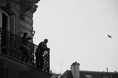 (Wanderer Eye) Tags: old sky bw woman house man paris bird vertical freedom fly blackwhite dance nikon haussmann view flight free difference elder balcon indifference nikkor18200 nikond300 hosseinmansouri