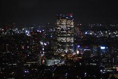 Noche de Tokio 4 (desde Torre de Tokio, 250 m)