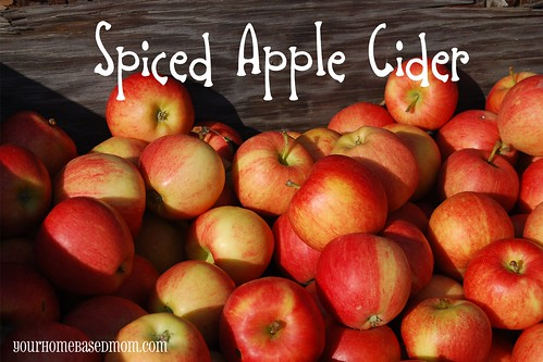 spiced apple cider - Page 185