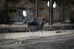 _X3V3214 (fleabilly) Tags: concrete bison iver derelick