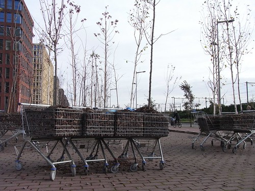 Trees In Trolleys - Urban Play Amsterdam