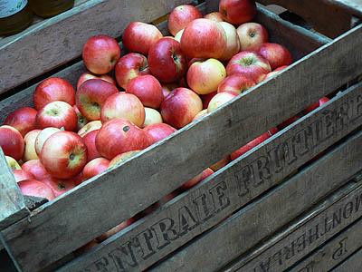 pommes dans un cageot.jpg
