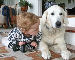 Hey Ditte!! I am here! (Ingrid0804) Tags: friends cute kids goldenretriever bestfriends blueribbonwinner kidsanddogs petsandkids babyanddog goldenretrieverwithkids
