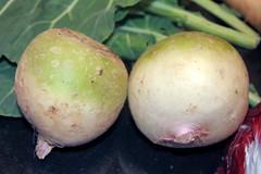Misato Rose radishes