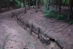 Trenches from the First World War, Verdun (becklectic) Tags: france europe wwi battle worldwari battlefield 2008 meuse trenches verdun views100 worldtrekker 20080917dsc7205