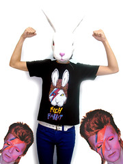 Rich Rabbit David BowieT (SCREAMING TiNG) Tags: rabbit rich