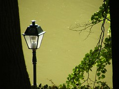 Lake (Drug Radomir) Tags: park street light wallpaper sun lake tree green water beautiful landscape day branch moscow moskva pejsaz caricino