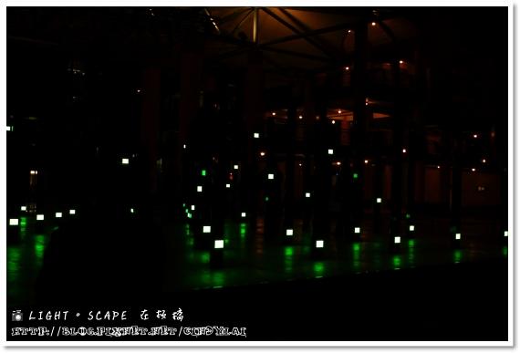 20081129_LIGHT SCAPE_50D_047