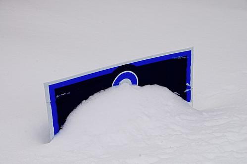 Snowbama '08