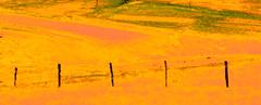 orange landscape (Eire #70) (S amo) Tags: irish orange eire connemara irlande conamara
