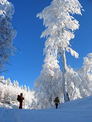 Kartepe167 (gezilerden) Tags: winter snow kar sapanca k kartepe enstantane