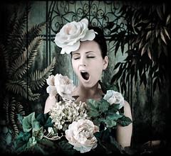 tagged....... (Kirsty Mitchell) Tags: self tagged storybook 2009 kirstymitchell rossinamademedoit