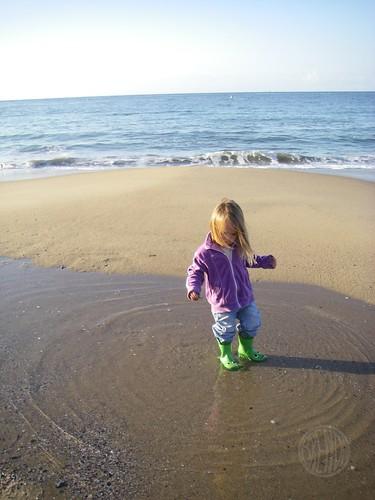 beach puddles