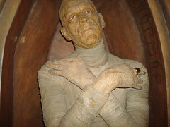 (Akaneh) Tags: nyc newyork dead weird scary freaky ring horror wax mummy waxmuseum bandages