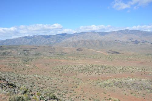 Arizona 2011 465