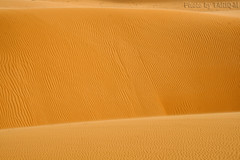 Wall of sand (TARIQ-M) Tags: texture landscape sand waves desert dunes riyadh saudiarabia         canon400d       canonefs18200mmf3556is