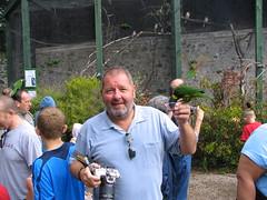 Lorikeet walk through aviary - Paradise Park, Hayle (John D McKenna) Tags: bear gay hot birds wales beard zoo goatee cub ellis handsome hunk johnellis