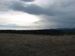 IMG_3223.JPG (JaredWO) Tags: alaska fire research boreal