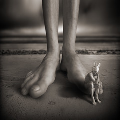 Mad Bunny and the magical feet (yves.lecoq) Tags: fivestarsgallery artlibre madbunny hourofthesoul