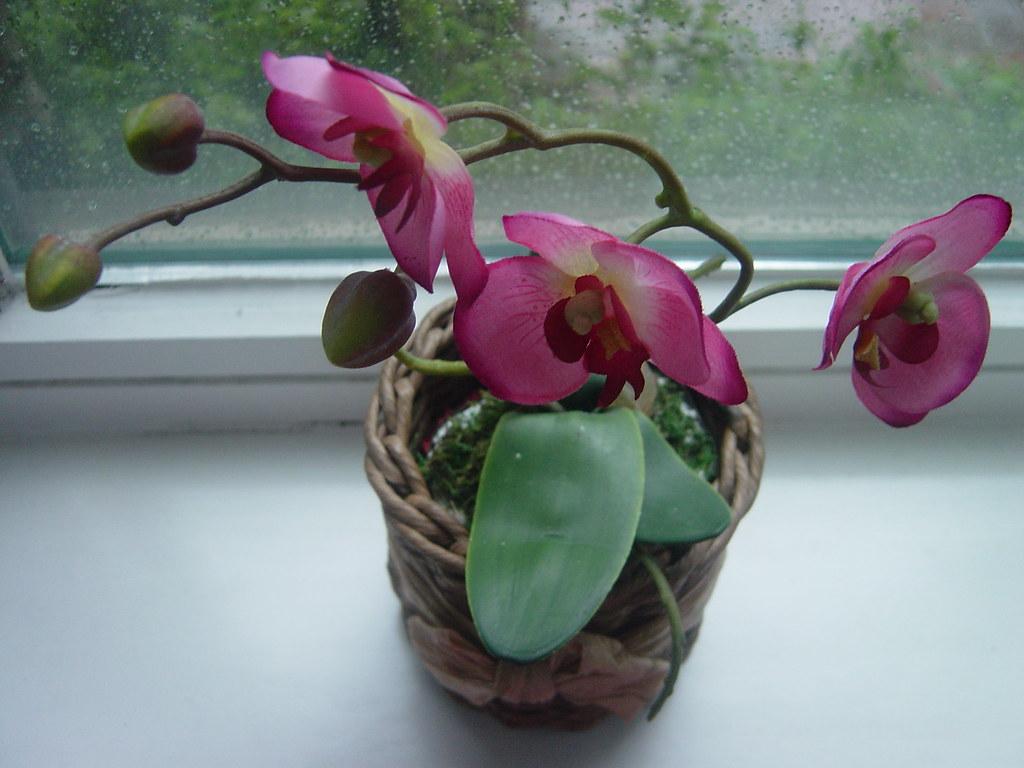 Pink Fake Flowers :)