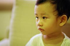 33350001 (ken0915) Tags: baby eos5 ef8518 dnp200