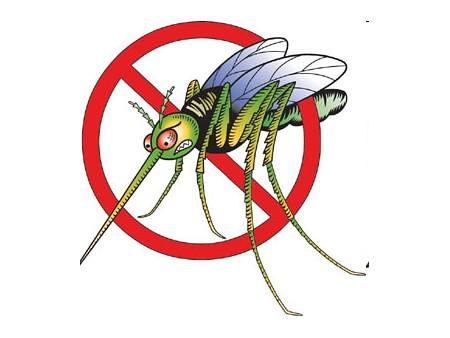 Interdit aux moustiques