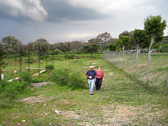 20080729-194000 (Chris Hernandez) Tags: naturaleza storm clouds mexico video lluvia wind jalisco windy paisaje viento nubes tormenta sanignacio cerrogordo canonsd1000