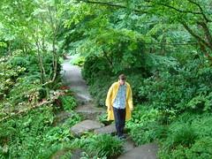 dsc04317.jpg (mlinksva) Tags: path raincoat mikelinksvayer bellevuebotanicalgarden