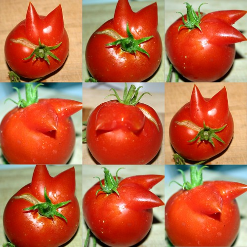 tomato warhol by djfrantic.