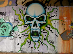 Nr Tiverton Parkway Station, Devon (DG Jones) Tags: skull graffiti devon plasma westcountry tiverton tivertonparkway