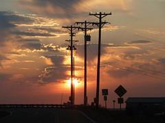 Wired (ElectricNovember) Tags: sunset urbannature telephonepoles natureslight grouptripod