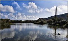 Lake Reflection (Brian The Euphonium) Tags: park lake reflections day country ducks sunny breakwater holyhead welshflickrcymru vosplusbellesphotos wfchol2008